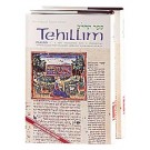 Tehillim Psalms 2 Volume Shrink Wrapped Set