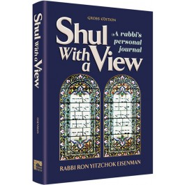 Shul With a View